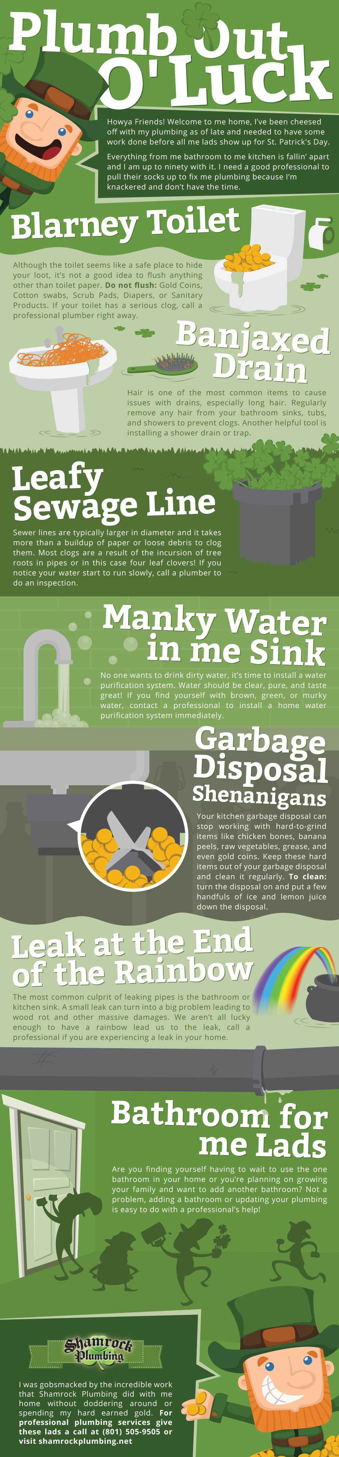 plumbing issues infographic