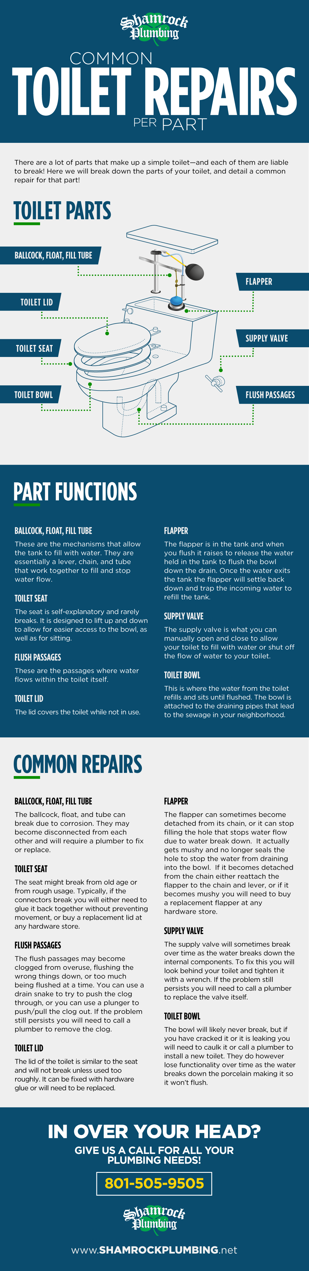 An infographic about toilet parts, part functions, and common repairs provided by Utah business Shamrock Plumbing